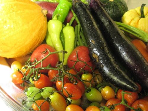 農家直送のこだわり無農薬野菜達